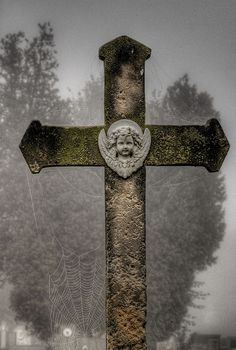 Cross with cobwebb...do you see two faces?