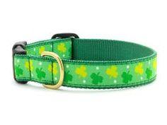 Shamrock Dog Collar XXXL