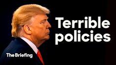 Trump's policies   The Briefing