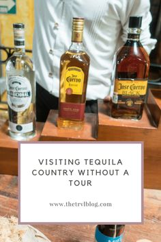 pinterest image for the blog post visiting tequila country without a tour. Tequila tour.