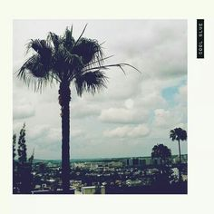 The Japanese House - Cool Blue