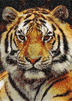 Tiger photo stitch free embroidery design 12 - Photo stitch embroidery - Machine embroidery forum