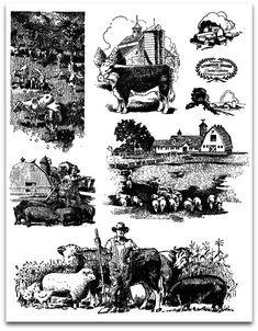 Vintage livestock images: free digital downloads