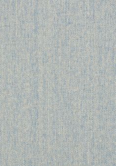 ADRIATIC, Sky Blue, T41136, Collection Grasscloth Resource 3 from Thibaut