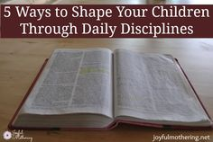 I think every home needs discipline to keep the family secure, stable, and sailing along. I like to call these dailyoccurrencesanchors.Because anchors are something used to hold another thing securely. For our family, I have found meal times to be terrific for creating these anchors.