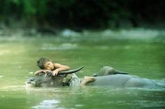 To have Respect for big Animals is good. And the Water buffalo is at peace as wellIn Thailand Animals on the farm are happy to let children play.The photos shows the boy is at peace as well.Welcome to Thailand and see Country life.  One word i say is Respect to themboth.