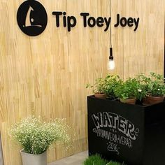 Spring at Tip Toey Joey HQ in Franca Brazil.  Have a lovely week everyone!