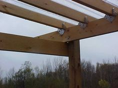 Chicken run with roof I