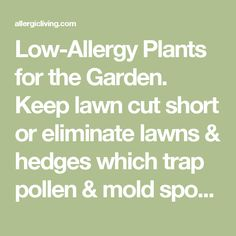 Low-Allergy Plants for the Garden. Keep lawn cut short or eliminate lawns & hedges which trap pollen & mold spores. Use a lid or plastic sheet to cover compost system. Avoid organic mulches or mushroom compost due to fungi & mold. Wear a hat & remove it before coming inside, same with shoes & clothes. Wash your hair to rid of pollen especially before bed. Don't garden at dusk or early morning when pollen count highest.