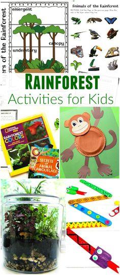 The Ultimate Rainforest Activities Kids Theme, Awesome Unit Study, Rainforest crafts, Rainforest printables, DIY Terrarium, learn animal habitats & More
