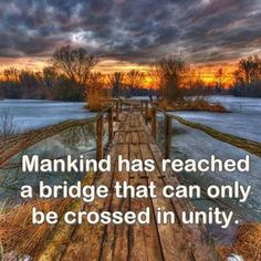 Mankind has reached a bridge that can only be crossed in unity. Wise Quotes, Inspirational Quotes, Unity In Diversity, Spiritual Wisdom, Spiritual Path, One Tree, Go Fund Me, Paths, Spirituality