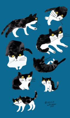 Illustration by Kevin Waldron, 2013, #Cat study.