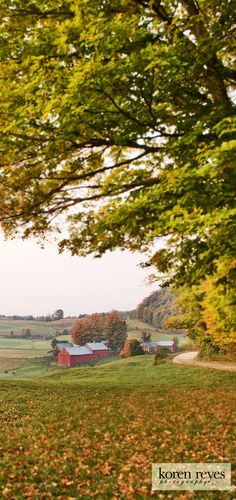 The most photographed barn and farm in Vermont. Landscape in the fall.