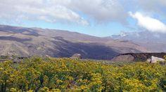 Valle Nevado, Santiago, Chile.