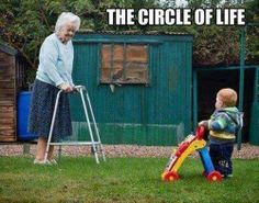 The Unavoidable Circle of Life ---- hilarious jokes funny pictures walmart fails meme humor Memes Humor, Humor Humour, Foto One, Anime Body, Anime Plus, Funny Quotes, Funny Memes, Funny Shit, Funny Stuff