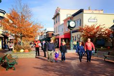 Fall shopping in Cape May. Autumn, foliage, Cape May Point, Ocean City, Jersey Cape, Cape May County, New Jersey