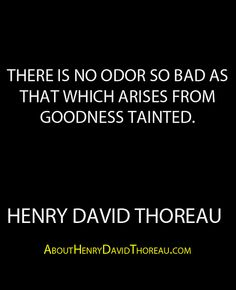 """""""There is no odor so bad as that which arises from goodness tainted."""" -Henry David Thoreau http://abouthenrydavidthoreau.com/?p=213"""