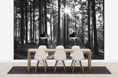 Sunbeam through Trees - b/w - Tapetit / tapetti - Photowall