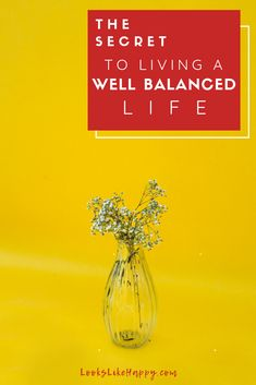 The Secret to Living a Well Balanced Life | Life is tough- make it easier by focusing on the key areas of your life that lead to balance.   #selfcare #personalgrowth