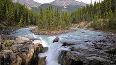 trees of Canada   Alberta River and Trees, Canada - Wallpaper #32594
