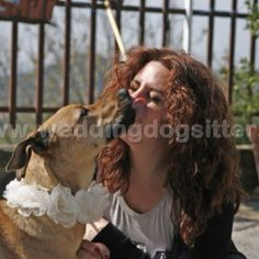 Www.weddingdogsitter.com x Pià!