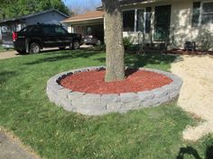 Landscaping Around Trees Google Search Flower Pots Pinterest
