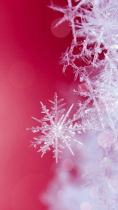 iPhone wallpaper winter