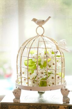 Spring decorating ideas. Birdcage flower arrangement.