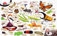 Lots of bugs are actually quite cool once you get to know them. Some Bugs celebrates the beautiful diversity in fun rhyming verse. Bugged is full of fun stories about how bugs have influenced human history. Insect Crafts, Insect Art, Pixel Art, Art For Kids, Crafts For Kids, Kids Stamps, Bugs And Insects, Book Layout, Book Images