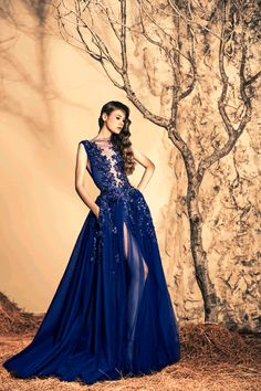 Stunning Evening Dresses By Ziad Nakad Fall/Winter 2014/2015