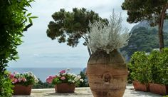 merci gaspard ! Capri Casa Morgano Photo by merci gaspard juin 2014