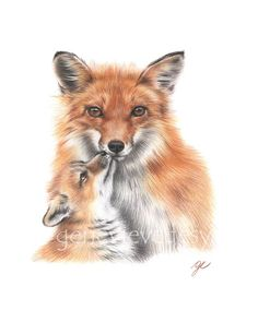 ✤ Title: Foxes ✤ Artist: Geneviève Désy ✤ Medium: Giclee print of a colored pencil drawing ✤ Dimensions: 5x7 inches or 8x10 inches (vertical/portrait orientation) High quality print, unframed and unmatted, printed on fine art matte paper with professional archival inks. Please note