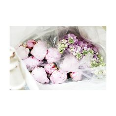 Tumblr ❤ liked on Polyvore featuring flowers, pictures, backgrounds, photos and pics