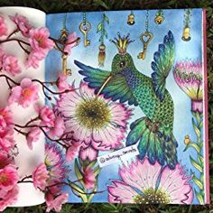 Magical Delights Colouring Book : Published in Czech as Carovne Lahodnosti Hardcover: Amazon.co.uk: Klara Markova: 9788027000272: Books