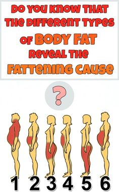 Do you know that the different types of body fat reveal the fattening cause?…