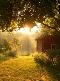 "country morning:   Pinner said,  ""an early morning walk down the path, past the barn to the meadow where light wakes my soul."""