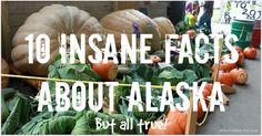 10 Insane Alaskan Facts (But all true!) - IdlewildAlaska