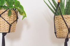 Diy Hanging, Hanging Baskets, Decorative Knots, Diy And Crafts, Arts And Crafts, Macrame Plant Hangers, Craft Work, Plant Decor, Decoration