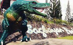 2019 Bohol Countryside Tour with Sagbayan Peak Adventure ALL-INN. Bohol Countryside Tour with entrance Fees plus Sagbayan Peak Bohol Philippines, Beautiful Islands, Countryside, Tours, Adventure, Adventure Movies, Adventure Books