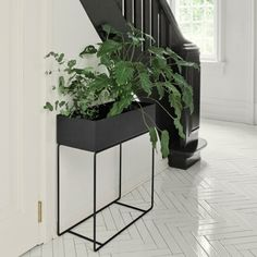 Ferm living https://www.google.no/search?q=plant tray