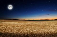 What is a Harvest Moon? HARVEST MOON FACTS AND INFORMATION Fred Schaaf