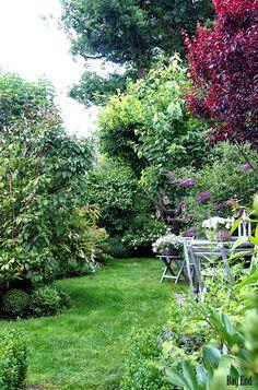Garden at the end of June / Puutarha kesäkuun lopussa The Secret Garden, Garden Inspiration, Stepping Stones, Scenery, Backyard, Cottage, In This Moment, Outdoor Decor, Flowers