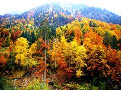 Oberstdorf im Herbstkleid
