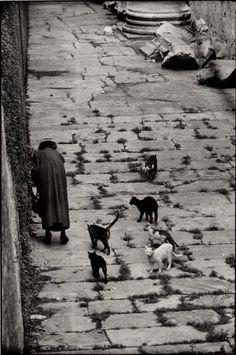 Rome, Italy 1956  © Elliott Erwitt/Magnum Photos