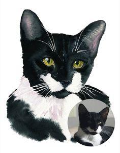 Watercolor Paintings Of Animals, Watercolor Cat, Watercolor Portraits, Animal Paintings, Custom Dog Portraits, Portraits From Photos, Pet Portraits, Easy Animal Drawings, Cat Memorial