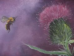 It is the little things - Thistle & Bumble Bee, Randy L. Picker