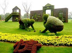 Chinese Plants, Chinese Garden, Amazing Gardens, Beautiful Gardens, Amazing Grass, Topiary Garden, Topiaries, Grass Flower, Buxus