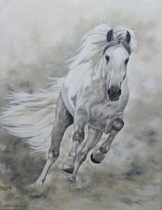 Caballo Blanco Horse Pencil Drawing, Horse Drawings, Beautiful Arabian Horses, Most Beautiful Horses, Horse Pictures, Animal Pictures, Horse Background, Arte Equina, Wild Horses Running