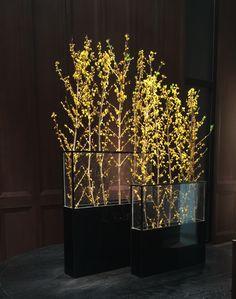 In door forest! Vertical Garden Plants, Artificial Orchids, Branch Decor, Japanese Flowers, Interior Plants, Arte Floral, Landscape Lighting, Green Plants, Ikebana