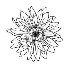 sunflower coloring page for kids flower coloring pages printables free wuppsycom